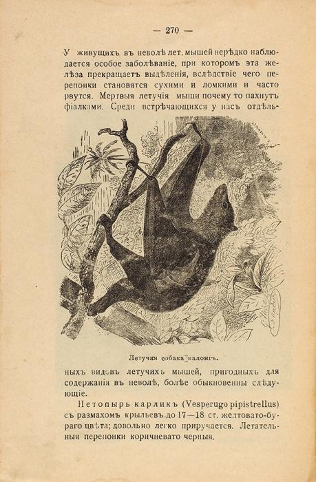 Зорин, М.Обезьяны, кошки, морские свинки, кролики, белки, мыши, крысы идругие мелкие млекопитающие, содержимые вневоле. Краткое руководство для любителей. С120 рисунками втексте. Пг.: Изд. Зоолог. маг. «Аквариум», 1918.