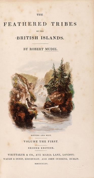 [Роскошные литографии] Муди, Р.Пернатые Британских островов. [Mudie, R.The Feathered tribes ofthe British islands. Наангл.яз.]. В2ч. Ч. 1. 2-е изд. Лондон: Whittaker &C°, 1835.