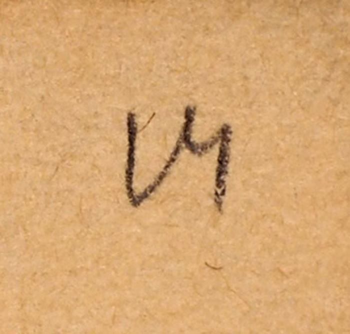 Серов Валентин Александрович (1865–1911) «Голова льва». 1896-1899. Бумага, графитный карандаш, 11x17см.